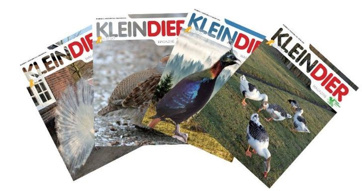 kleindier magazine