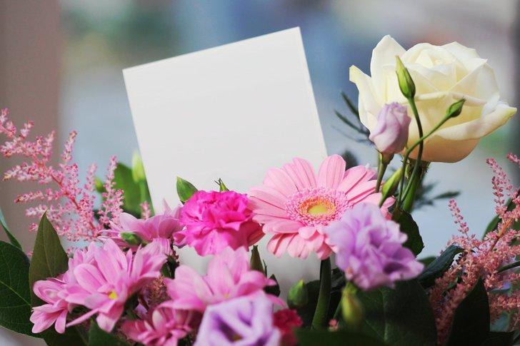 Vava onderzoek bloemen